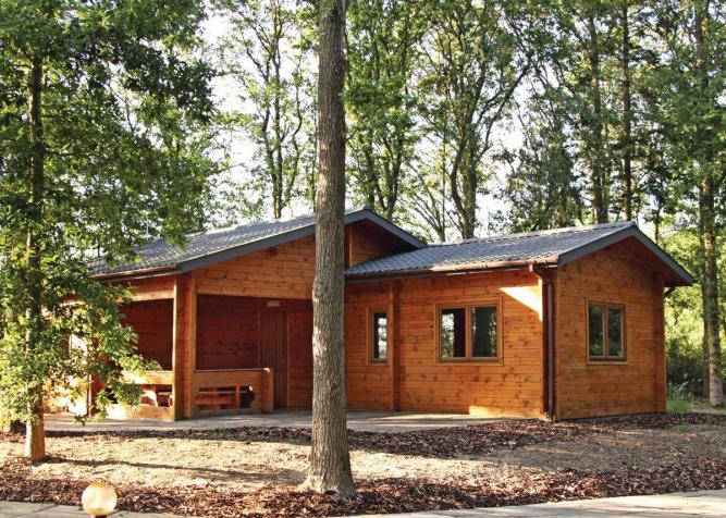 Woodland Birch Lodge